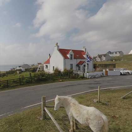 Isle of Eriskay ponies